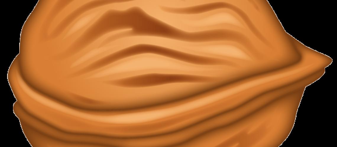 emoji-icon-glossy-00-00-food-drink-food-vegetable-walnut-72dpi-forPersonalUseOnly